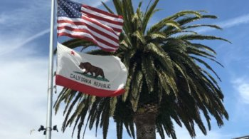 California LLC State Flag